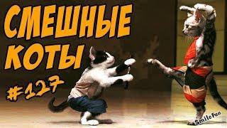 Смешные Кошки и Коты Приколы с Котами и Кошками 2018 Funny Cats