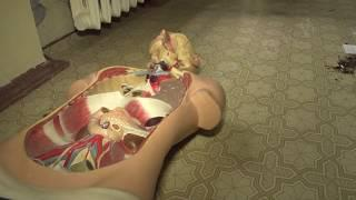 Мумия младенца возле морга