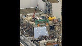 Nuke Expert Dana Durnford On Japans 8th Anniversary Fukushima Nuclear Meltdowns