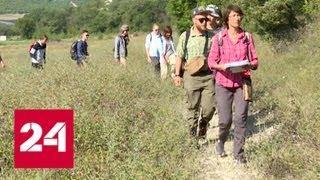 Студенты-геологи изучают Крымские горы - Россия 24