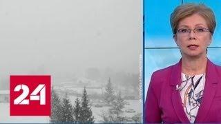 """""""Погода 24"""": циклоны атакуют Европейскую часть страны - Россия 24"""