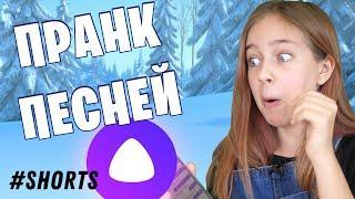 Троллю Яндекс Алису песней #shorts