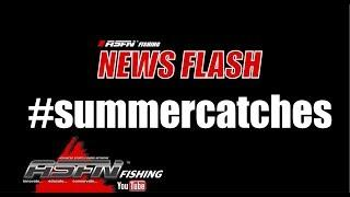 ASFN News Flash #summercatches