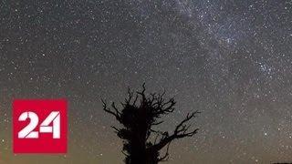 Самый яркий звездопад года: как не пропустить космическое шоу - Россия 24