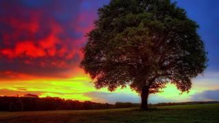 Исцеляющая музыка Рейки. Гармонизация сознания, восстановление энергии, очищение тела 432 Гц