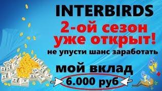 INTER BIRDS Лучшая экономическая игра для заработка с выводом реальных денег