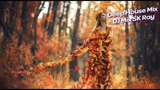 Deep House Mix Dj Mix SK Ray Music 2020 Vol 5