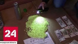 ФСБ пресекла ввоз наркотиков и теракт в Москве - Россия 24