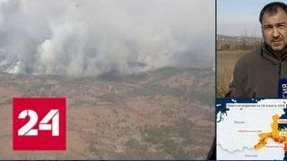 Амурской области выделят 80 миллионов рублей для борьбы с природными пожарами - Россия 24