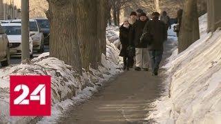 Снежный наплыв: синоптики опять обещают осадки - Россия 24