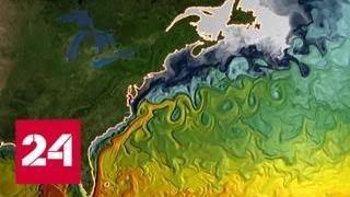 Замедление Гольфстрима сделает голливудский сценарий реальным - Россия 24