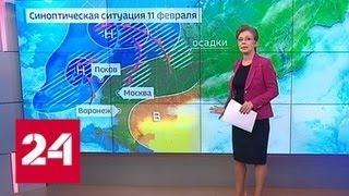 """""""Погода 24"""": на Русской равнине начинается новая оттепель - Россия 24"""