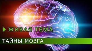 Тайны мозга Живая тема Документальный фильм РенТВ 2020 Документальные фильмы HD