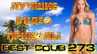 Лучшие видео приколы Best Coub Compilation Смешные Моменты Куб Коуб №273 #TiDiRTVLIVE