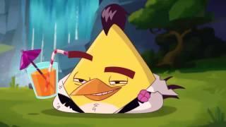 Angry Birds Cartoon Series Season 2 | angry birds toon