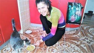 Смешные кошки коты и собаки До Слез Как мы кушаем Просто ржака Приколы с животными 2017 Топ Подборка