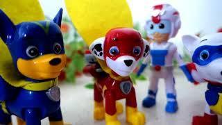 Щенячий Патруль новые серии ДИНОЗАВР Развивающие мультики Paw Patrol Мультфильмы 2017 Игрушки ТВ