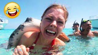 Смешные видео 2020 ● Смешные нападения животных на людей | 8 Минут Смеха до Слез | Лучшие Приколы #4