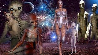 Инопланетные расы. Кто они друзья или враги ? Тайны мира. Документальные фильмы.