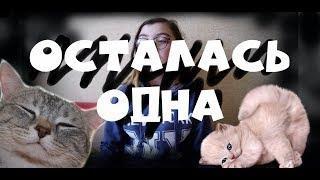 Я останусь одна-Екатерина Яшникова ~ПАРОДИЯ~
