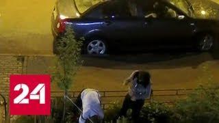 Ночных вандалов, разоряющих клумбы в подмосковном Видном, сняли на видео - Россия 24