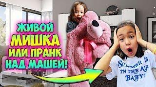 ПРАНК НАД МАШЕЙ / ОЖИВШИЙ ПЛЮШЕВЫЙ МИШКА / Видео Анютка малютка