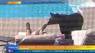 Медведь решил попить воды из бассейна и напугал хозяина дома