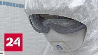 Пентагон подтвердил, что собирает биоматериалы россиян: чем это нам грозит - Россия 24