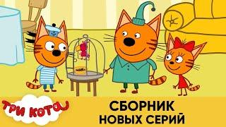 Три Кота | Сборник новых серий | Мультфильмы для детей 2021